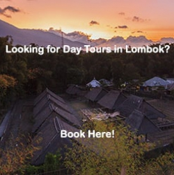 Day tour in Lombok