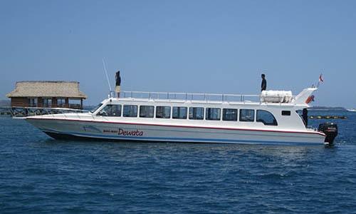 Mahi Mahi Fast Boat